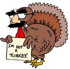 turkeyindisguise