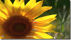 Windows 7-2011-05-25-14-12-15